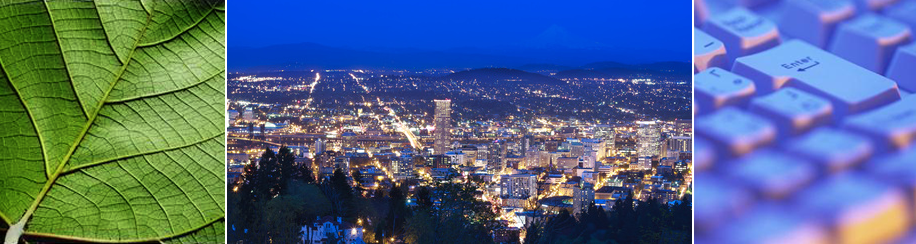 Portland and Anchorage Technology Consultants